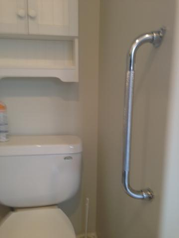 Large grab bar at the shower entry for stability