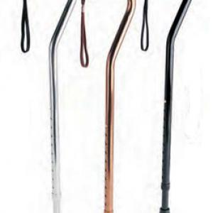 Canes of all types and sizes